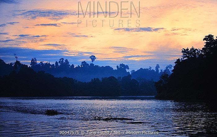 Kinabatangan River at dawn, Sabah, Borneo, September 2008  -  Tony Heald/ npl