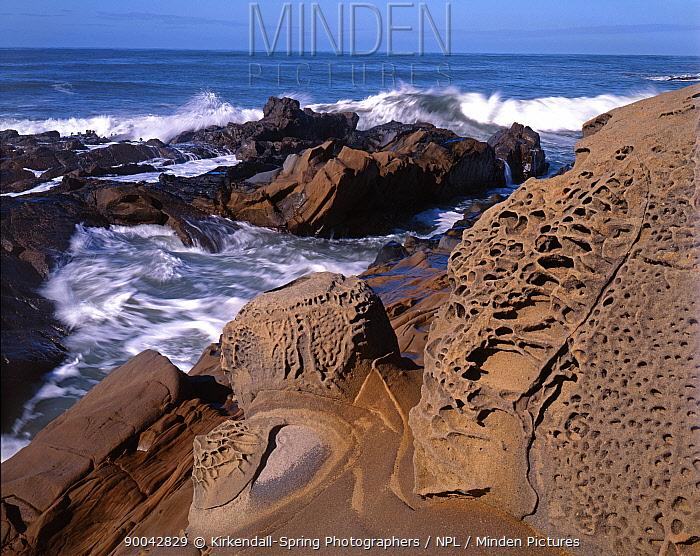 Rocky coastline at Bean Hollow State Beach, California, USA  -  Kirkendall-spring/ npl
