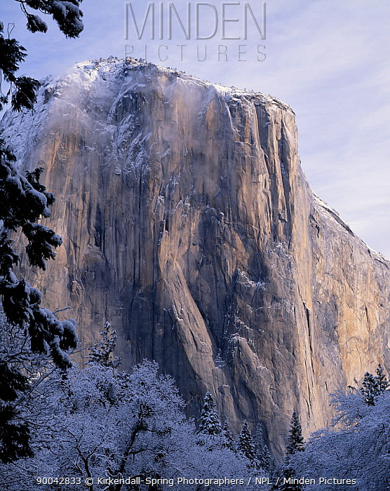 El Capitan after a winter storm, Yosemite National Park, California, USA  -  Kirkendall-spring/ npl