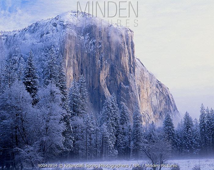 El Capitan after a winter storm in Yosemite National Park, California, USA  -  Kirkendall-spring/ npl