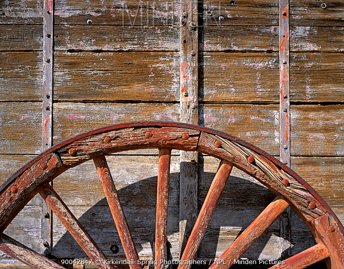 Detail of wagon at historic Harmony Borax Works in Death Valley National Park, California, USA  -  Kirkendall-spring/ npl