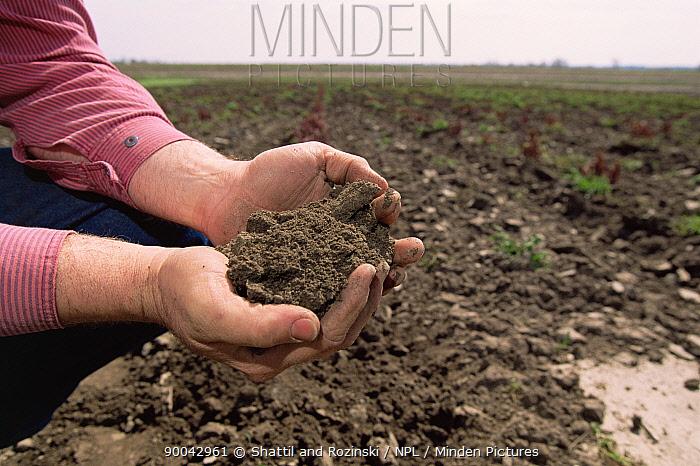 Handful of healthy soil, Colorado, USA  -  Shattil & Rozinski/ npl
