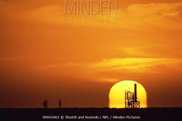 Off-shore oil rig silhouetted against setting sun, Gulf of Mexico, off Texas coast, USA  -  Shattil & Rozinski/ npl