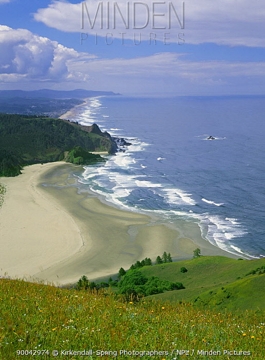 Looking down on the coastline south of the Salmon River mouth from Cascade Head, Oregon, USA  -  Kirkendall-spring/ npl
