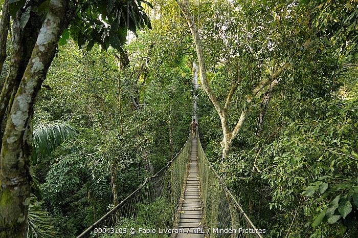 Man crossing rainforest canopy walkway at 70ft above ground level, Tambopata National reserve, Amazonia, Peru  -  Fabio Liverani/ npl