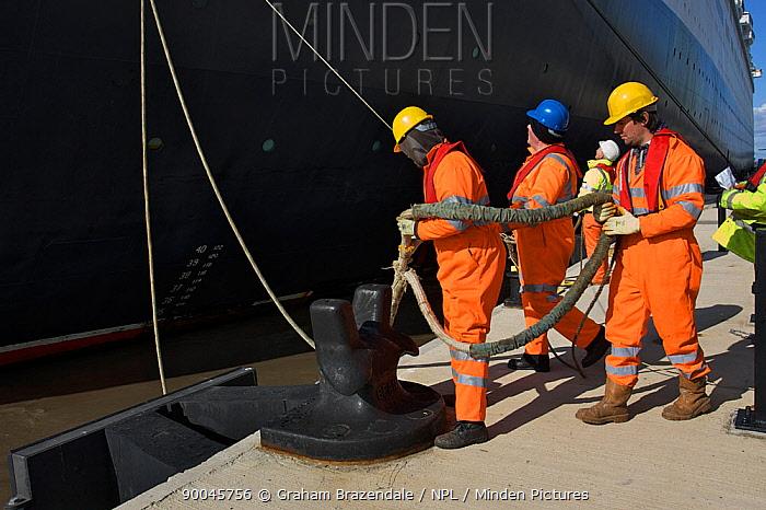 Stevedores docking the QE2 as she arrives in Liverpool for her Farewell Tour, October 2008  -  Graham Brazendale/ npl