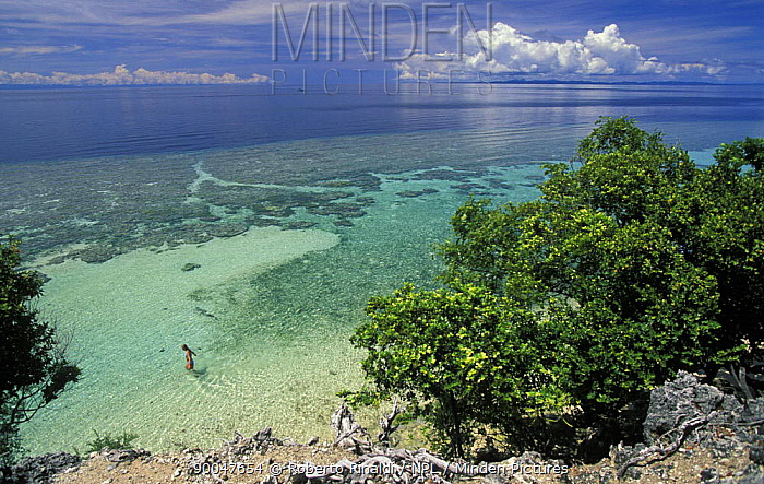 Woman entering clear waters on southern tip of Walea Island, Togian Islands, Sulawesi  -  Roberto Rinaldi/ npl