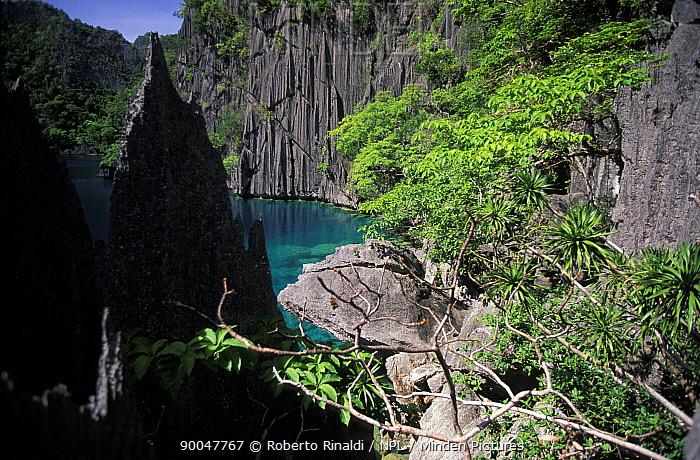 Limestone cliffs at Kayangan Lake, The Blue Lagoon, Coron Island, Northern Palawan, Philippines  -  Roberto Rinaldi/ npl