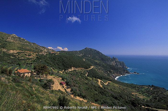 Argentario peninsula, west coast of Italy  -  Roberto Rinaldi/ npl