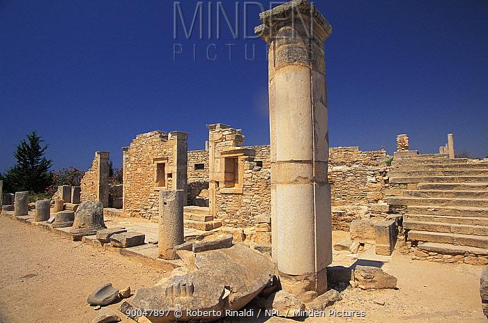 Temple of Apollo ruins, Cyprus, Greece  -  Roberto Rinaldi/ npl