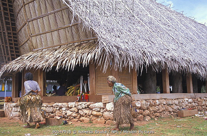 Old woman walking in front of a typical house wearing the traditional grass skirt for a local festival, Yap, Micronesia  -  Roberto Rinaldi/ npl