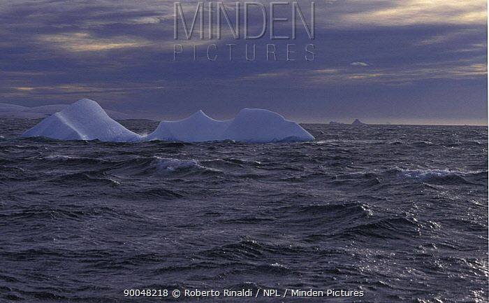 Iceberg with bad weather arriving, Antarctic Peninsula  -  Roberto Rinaldi/ npl