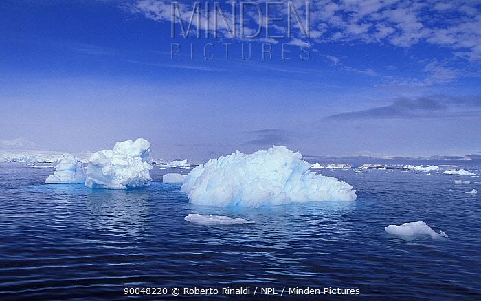 Icebergs on the Antarctic Peninsula  -  Roberto Rinaldi/ npl