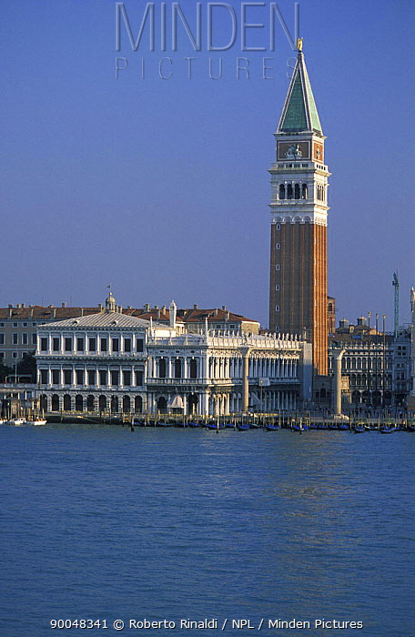 Campanile (Bell Tower), St Mark's Square, Venice, Italy  -  Roberto Rinaldi/ npl