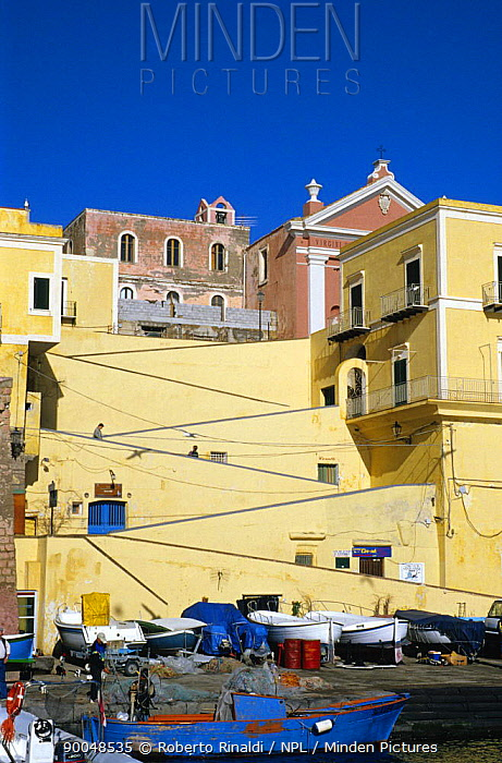The 'Rampa' from the Roman port, Ventotene Island, Pontine Islands, Italy  -  Roberto Rinaldi/ npl