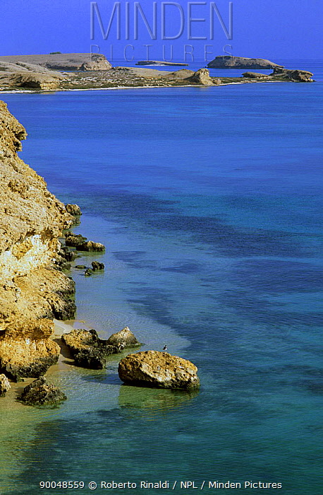 Coastline of Abu Latt Island, Farasan Islands, Saudi Arabia  -  Roberto Rinaldi/ npl