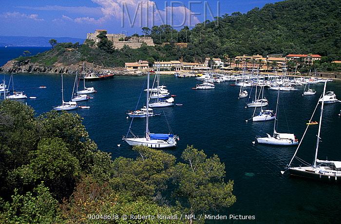 Boats moored at Ile de Porquerolles, France  -  Roberto Rinaldi/ npl