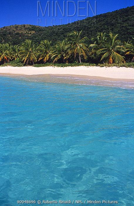 White Bay, Jost Van Dyke Island, British Virgin Islands (BVI)  -  Roberto Rinaldi/ npl