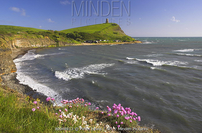 Kimmeridge Bay on a windy summers day with sea thrift (Armeria maritima) and white sea campion in the foreground Jurassic Coast World Heritage Site Dorset, UK May 2006  -  Peter Lewis/ npl