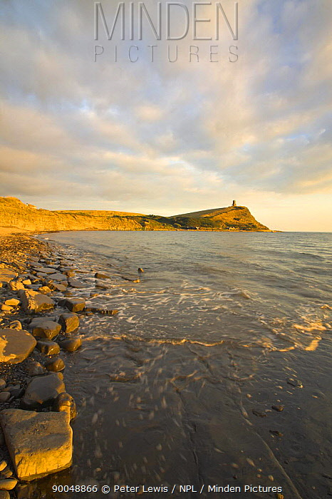 Kimmeridge Bay with Clavel Tower in the distance, Dorset Jurassic Coast World Heritage Site December 2005  -  Peter Lewis/ npl