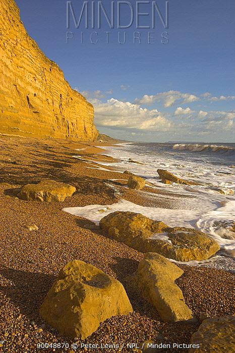 Sea Cliffs at Burton Bradstock, Dorset Jurassic Coast World Heritage Site September 2005  -  Peter Lewis/ npl