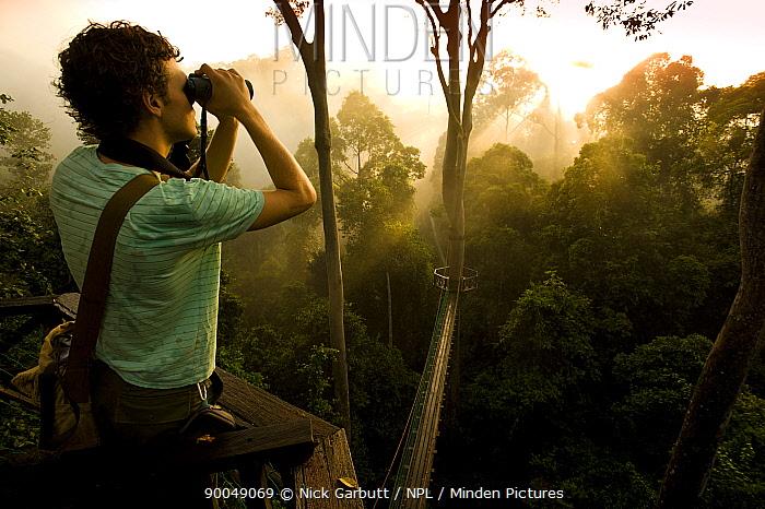 Birdwatcher on canopy walkway, Danum Valley, Sabah, Borneo, Malaysia  -  Nick Garbutt/ npl