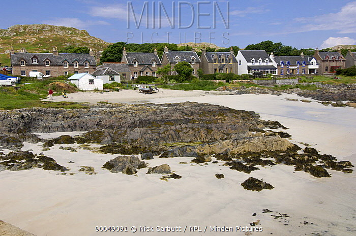 Beach front and cottages Isle of Iona, Inner, Hebrides, Scotland, UK, 2008  -  Nick Garbutt/ npl