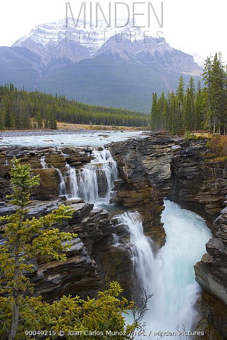 Athabasca river, Jasper NP, Rocky Mountains, Alberta, Canada  -  Juan Carlos Munoz/ npl