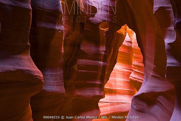 Antelope canyon, Arizona, USA  -  Juan Carlos Munoz/ npl