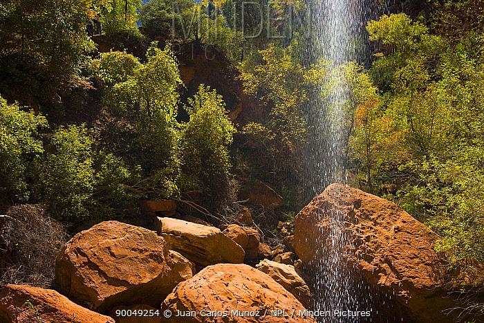 Zion NP with waterfall in foreground, Utah, USA  -  Juan Carlos Munoz/ npl