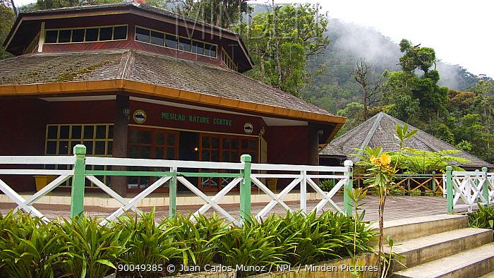 Mesilau Nature Centre, Mount Kinabalu NP, Sabah, Borneo, Malaysia 2007  -  Juan Carlos Munoz/ npl