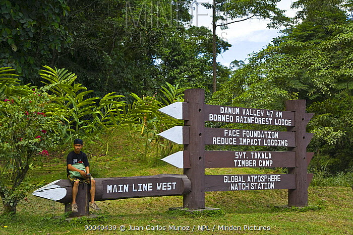 Signpost to rainforest lodges, Danum Valley forest reserve, Sabah, Borneo, Malaysia  -  Juan Carlos Munoz/ npl