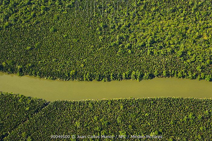 Aerial view of river and lowland rainforest, Rio Sungai Kinabatangan, Sabah, Borneo, Malaysia  -  Juan Carlos Munoz/ npl