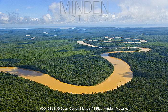 Aerial view of river meandering through lowland rainforest, Rio Sungai Kinabatangan, Sabah, Borneo, Malaysia  -  Juan Carlos Munoz/ npl