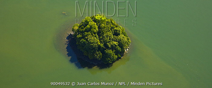 Aerial view of island in the mouth of the River Kinabatangan, Sabah, Borneo, Malaysia  -  Juan Carlos Munoz/ npl