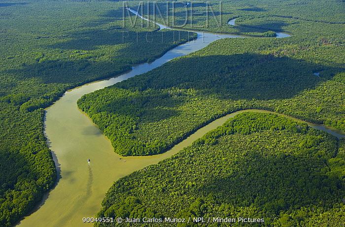 Aerial view of lowland rainforest and Kinabatangan River and tributaries, Sabah, Malaysia 2007  -  Juan Carlos Munoz/ npl