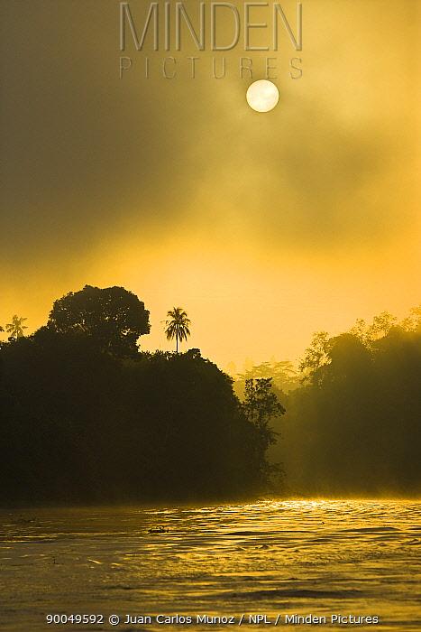 River Sungai Kinabatangan at dawn, Sabah, Borneo, Malaysia 2007  -  Juan Carlos Munoz/ npl