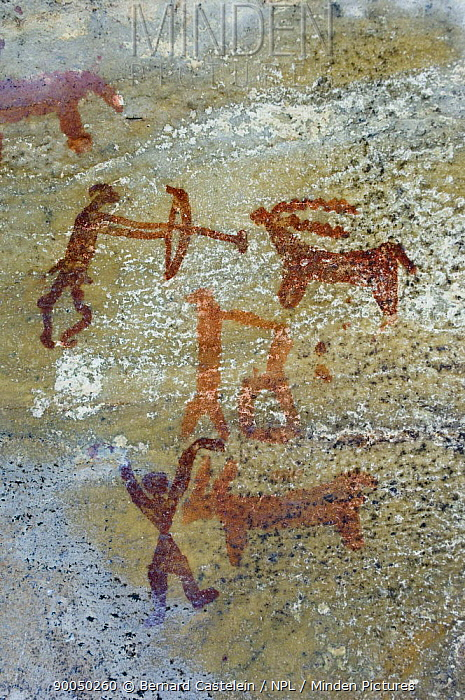 Prehistoric rock painting of men hunting, Bhimlat, Rajasthan, India  -  Bernard Castelein/ npl
