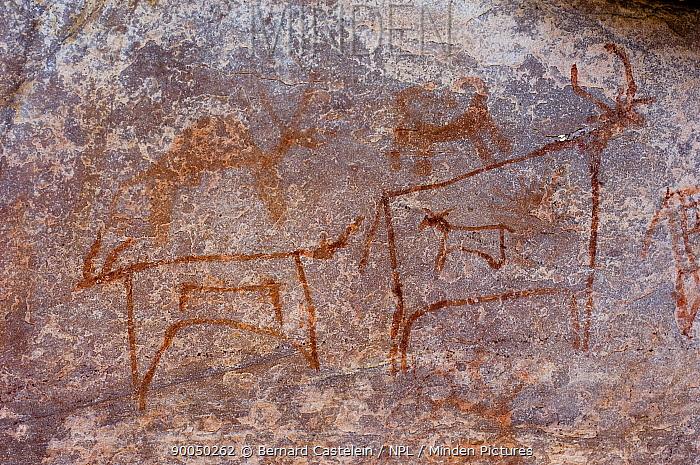 Prehistoric rock painting of animals, Raokachatkaya, Rajasthan, India  -  Bernard Castelein/ npl