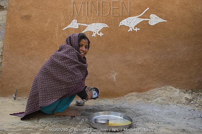 Rajasthani woman beside traditional painting on mud wall of house during Diwali festival, Bada Gaire Killa village, Rajasthan India  -  Bernard Castelein/ npl