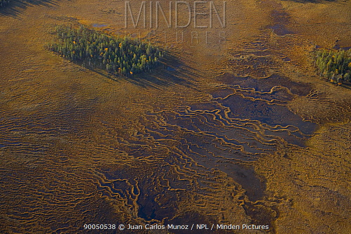 Aerial view of peat wetlands, Laponia, Lappland, Finland  -  Juan Carlos Munoz/ npl