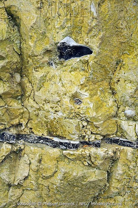 Layer of flint, chert, silex in chalk cliff at Cap Blanc-Nez, Cote d'Opale, France  -  Philippe Clement/ npl