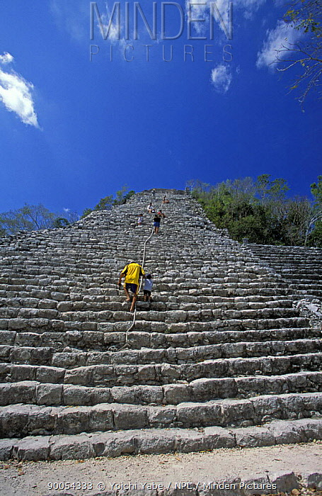 People climbing steep side of a Mayan temple, with only a rope to steady themselves and no handrails Yucatan, Mexico March 2005  -  Yoichi Yabe/ npl