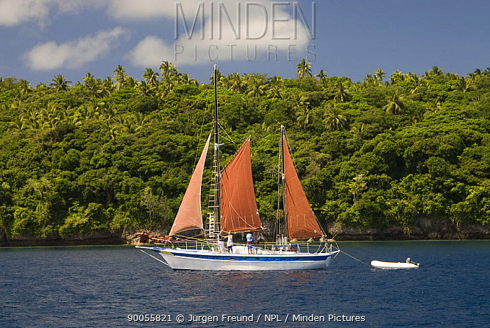 Melinda Sea Adventures sailboat for whale watching, Tonga, Melanesia, 2007  -  Jurgen Freund/ npl