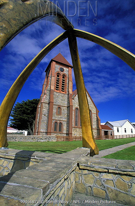 Arch formed by whale ribs outside Christ Church Cathedral It was erected in 1933 to celebrate a century of British rule, Port Stanley, Falkland Islands  -  Daniel Allisy/ npl