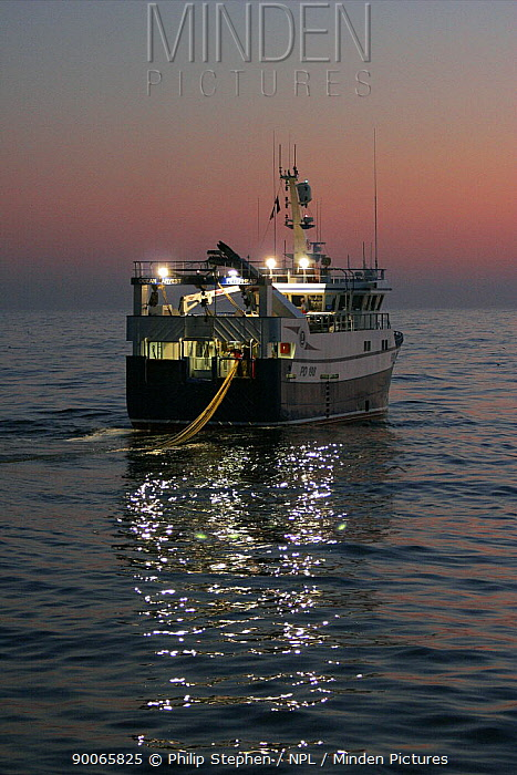 MFV Ocean harvest shooting the net at dusk North Sea, September 2008  -  Philip Stephen/ npl