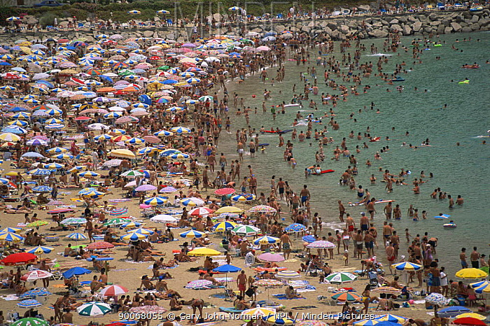 Busy beach in the Canary Islands full of people sunbathing and swimming, 1994  -  Gary John Norman/ npl