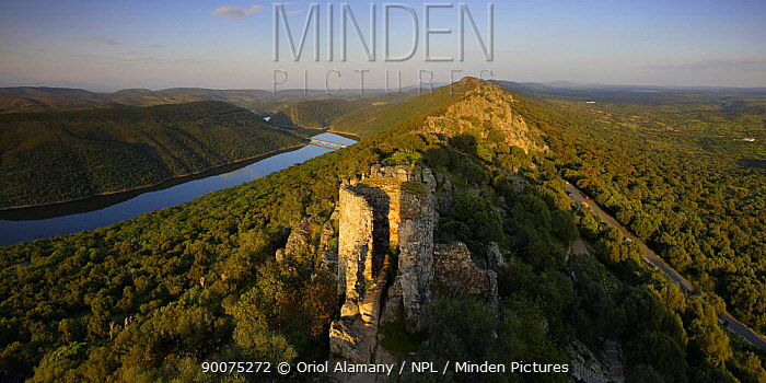 Monfrague Castle (XII-XV Century) Las Corchuelas sierra with Tajo river, Monfrague National Park, Caceres, Extremadura, Spain, April  -  Oriol Alamany/ npl