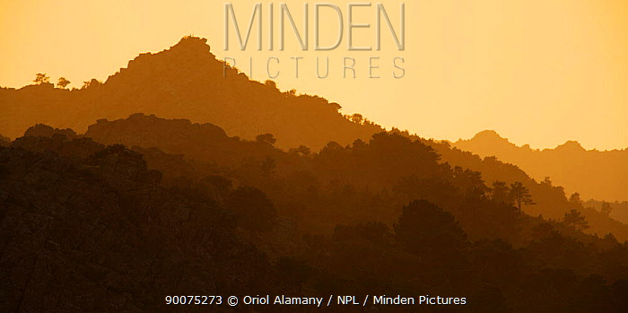 Mediterranean forests in Santa Catalina sierra at sunset, Monfrague National Park, Caceres, Extremadura, Spain April  -  Oriol Alamany/ npl