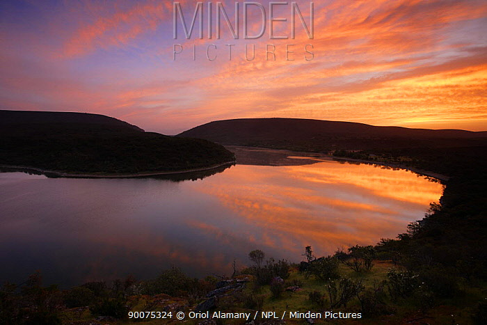 Tietar river bend at dawn, Monfrague National Park, Caceres, Extremadura, Spain, April  -  Oriol Alamany/ npl